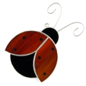 LadyBug Suncatcher/Nightlight